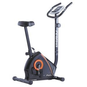 Pegasus Ποδήλατο Γυμναστικής Polo BC31500