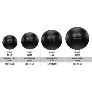 Life Fit Pro GymBall Επαγγελματική Μπάλα γυμναστικής 55cm - 85cm Μαύρη F-GYM-55-75-21