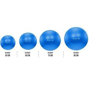Life Fit Pro GymBall Επαγγελματική Μπάλα γυμναστικής 55cm - 85cm Μπλε F-GYM-55-85-12