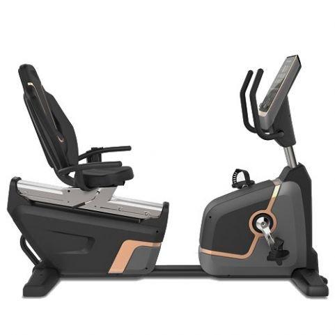 Viking Επαγγελματικό Καθιστό Ποδήλατο Γυμναστικής R-007 PRO BIKE