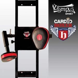 Cardio Boxing 2 Focus Pads 4080215